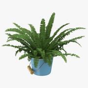 House Plant 04 3d model