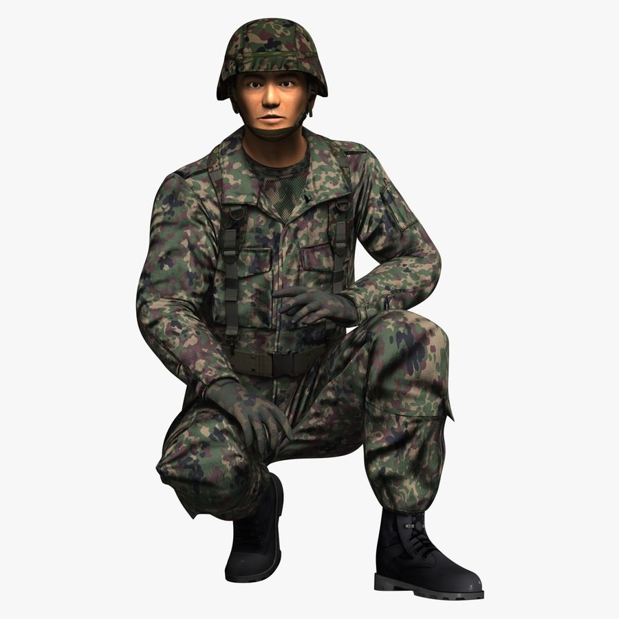 Asker JGSDF royalty-free 3d model - Preview no. 8