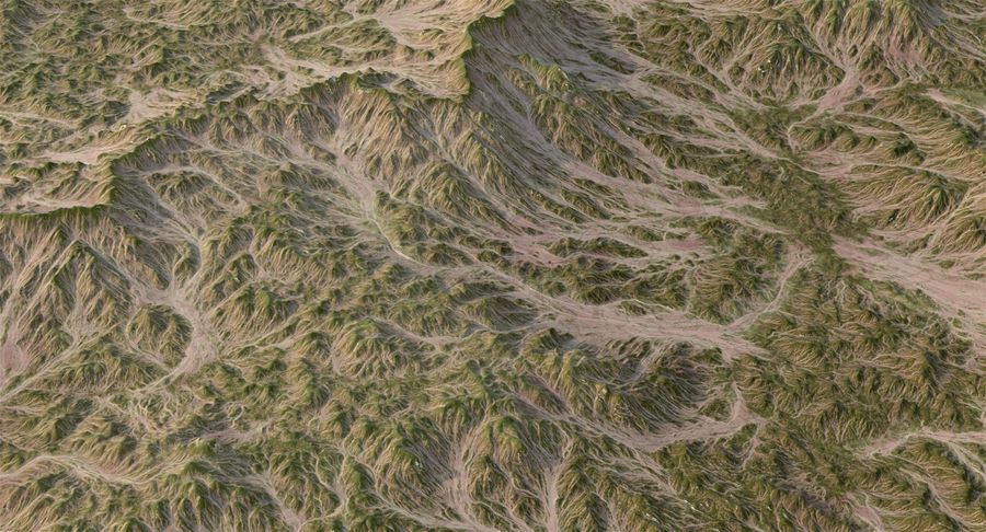 Grassy Terrain 2 royalty-free 3d model - Preview no. 8