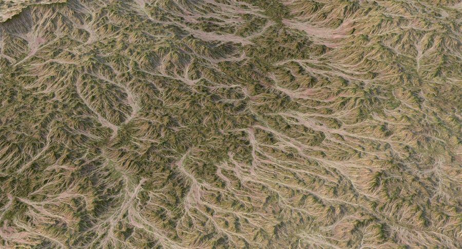 Grassy Terrain 2 royalty-free 3d model - Preview no. 11