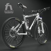 Mountainbike RAM 3d model