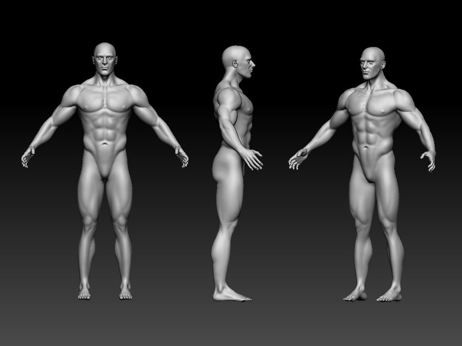 Basemesh do corpo masculino - Lowpoly - modelo 3D Modelo 3D de baixo poli royalty-free 3d model - Preview no. 7