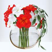 红色和白色鸢尾花 3d model