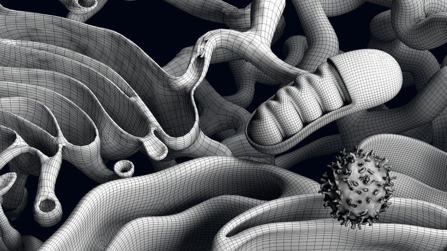 动物细胞3D royalty-free 3d model - Preview no. 16