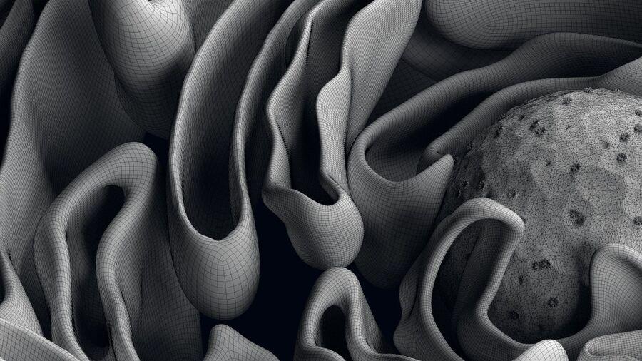 动物细胞3D royalty-free 3d model - Preview no. 15