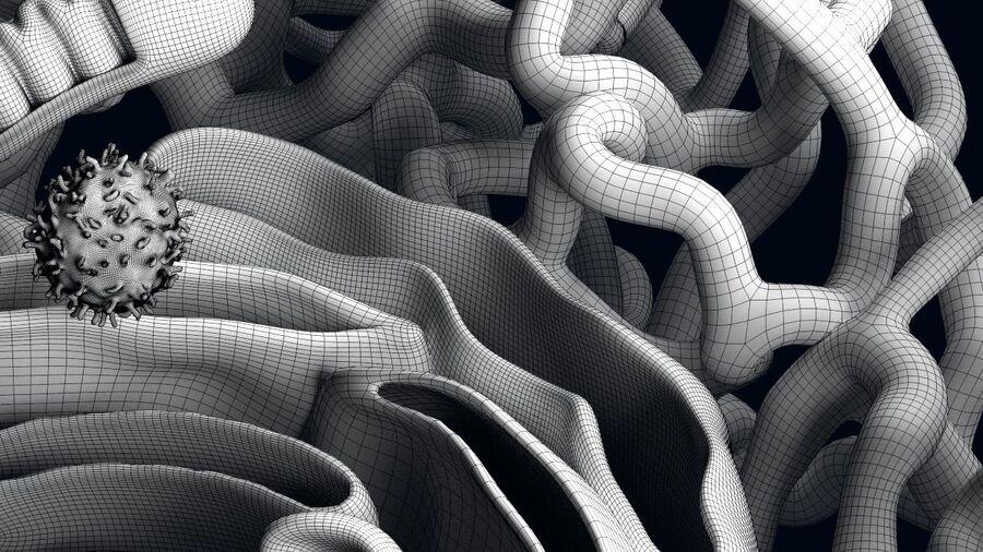 动物细胞3D royalty-free 3d model - Preview no. 17