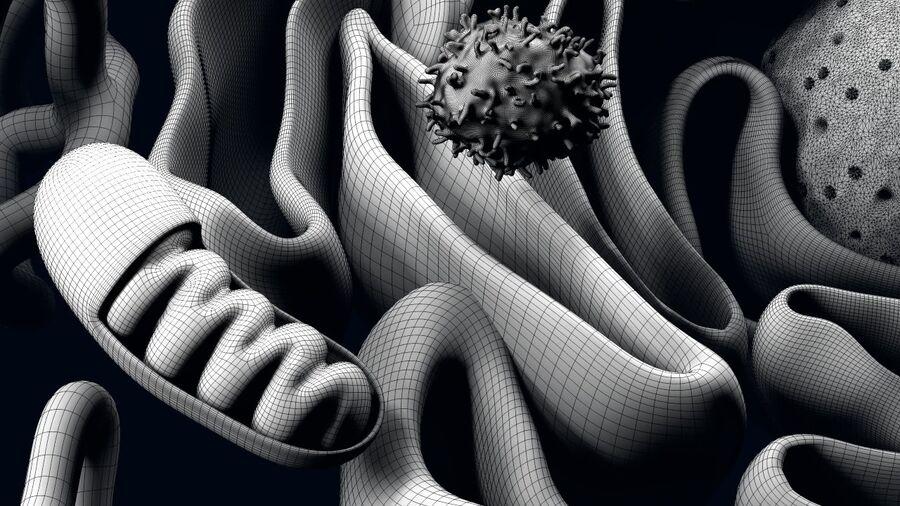 动物细胞3D royalty-free 3d model - Preview no. 21