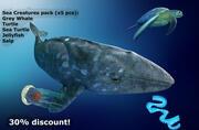 海洋生物捆绑Lowpoly AR VR手机 3d model