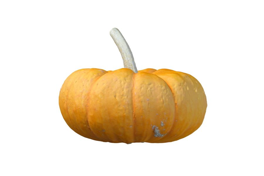Small Pumpkin royalty-free 3d model - Preview no. 3