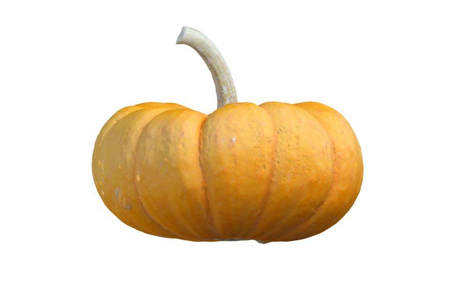 Small Pumpkin royalty-free 3d model - Preview no. 4