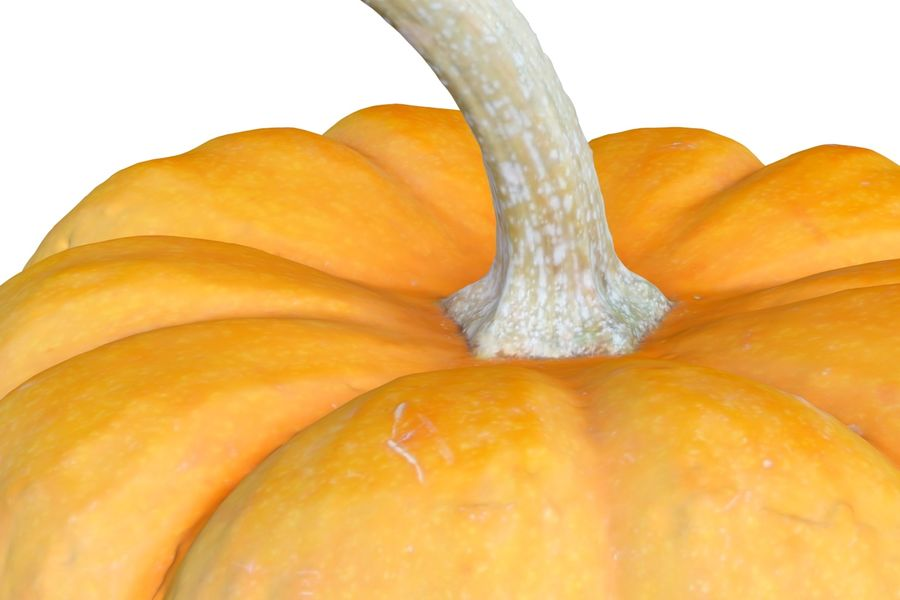 Small Pumpkin royalty-free 3d model - Preview no. 5