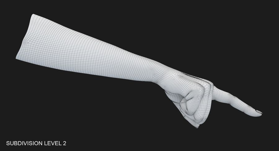 Female Arm A (Pose E) Pointing royalty-free 3d model - Preview no. 54