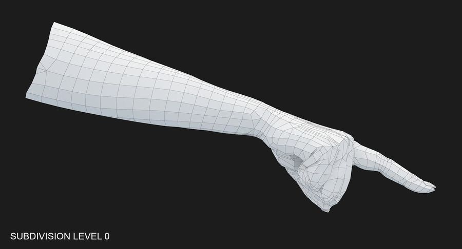 Female Arm A (Pose E) Pointing royalty-free 3d model - Preview no. 53