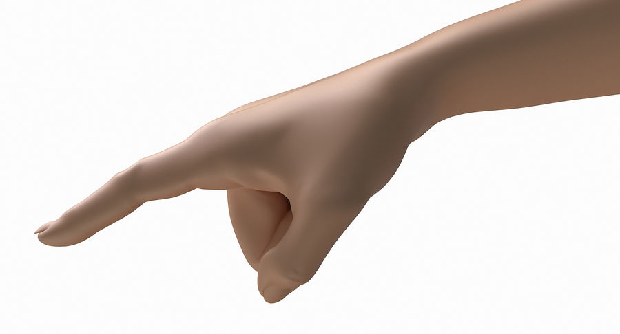 Female Arm A (Pose E) Pointing royalty-free 3d model - Preview no. 21