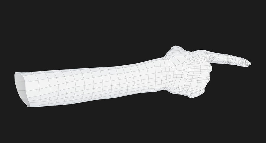 Female Arm A (Pose E) Pointing royalty-free 3d model - Preview no. 51