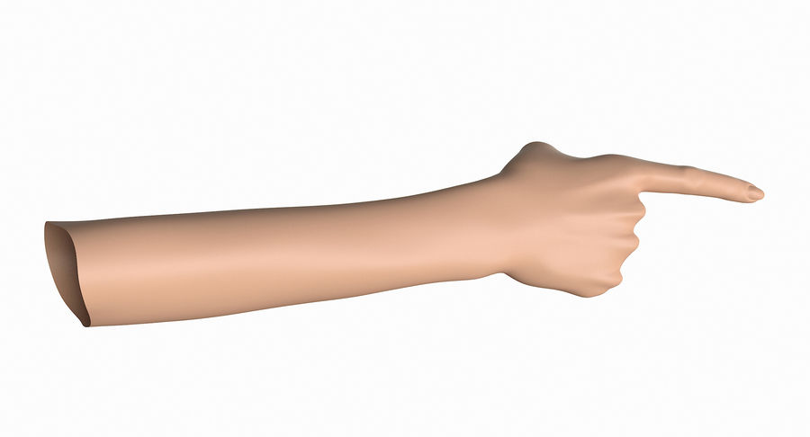 Female Arm A (Pose E) Pointing royalty-free 3d model - Preview no. 24