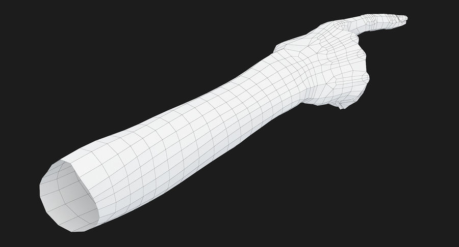 Female Arm A (Pose E) Pointing royalty-free 3d model - Preview no. 34