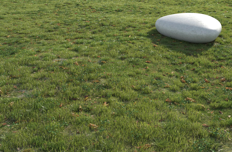 Field Grass royalty-free 3d model - Preview no. 2