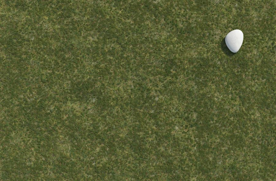 Campo de hierba royalty-free modelo 3d - Preview no. 6