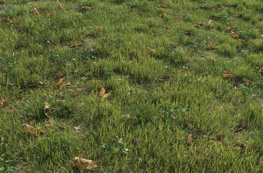 Campo de hierba royalty-free modelo 3d - Preview no. 3
