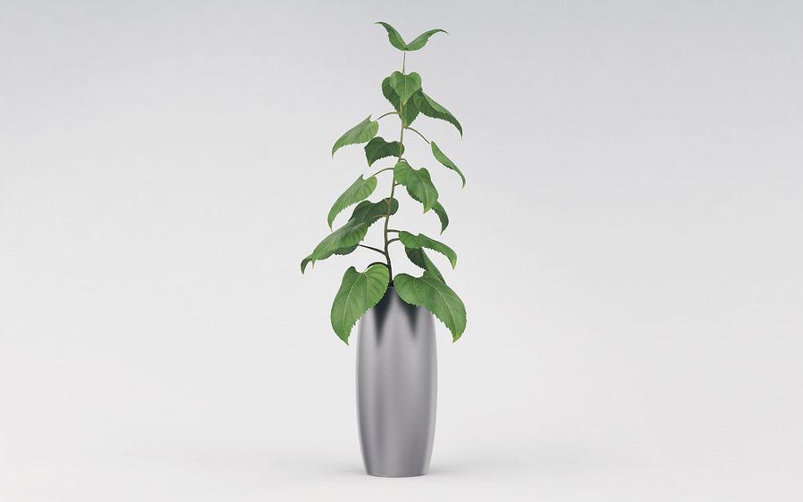 Plante en pot royalty-free 3d model - Preview no. 2
