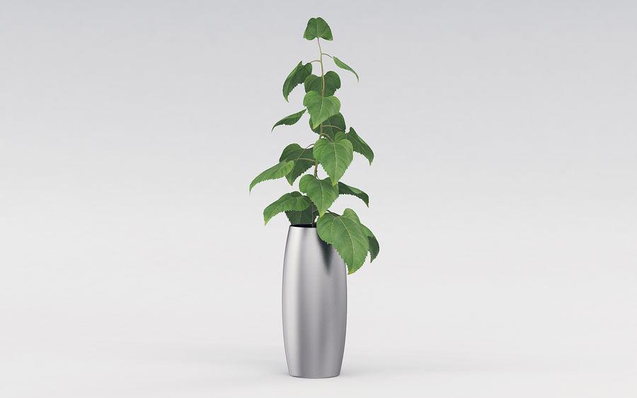 Plante en pot royalty-free 3d model - Preview no. 7