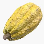 Yellow Cocoa Fruit 3D Model 3d model