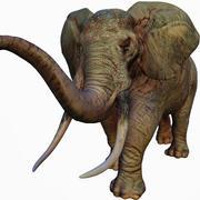 Elefante africano realista 3d model
