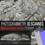 Mountain rock scanned 3D model 3d model