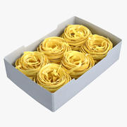 Pasta Nests 3D Models Set 3d model