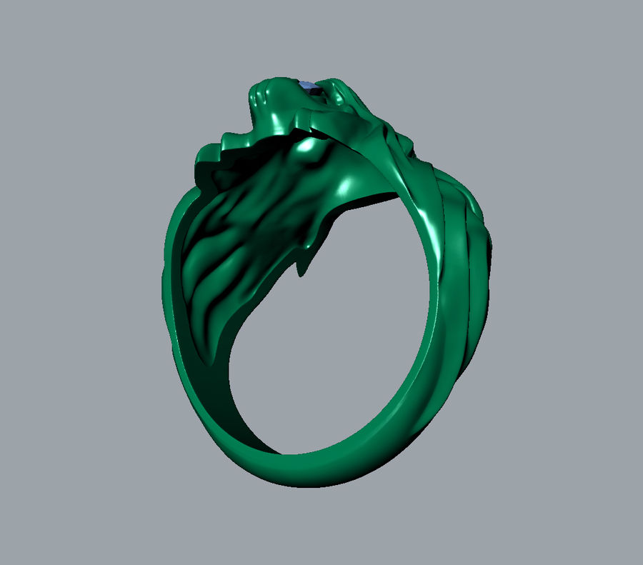 Wild Cat Ring royalty-free 3d model - Preview no. 9