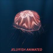 медуза анимированная 3d model