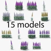 Digitalis (Foxglove) 3d model