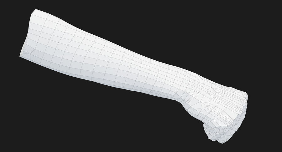 Female Arm A (Pose D Textured) Fist royalty-free 3d model - Preview no. 35