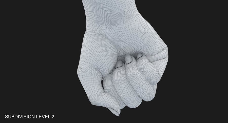 Female Arm A (Pose D Textured) Fist royalty-free 3d model - Preview no. 47