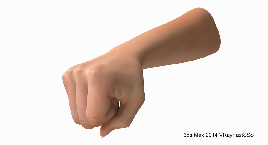 Female Arm A (Pose D Textured) Fist royalty-free 3d model - Preview no. 4