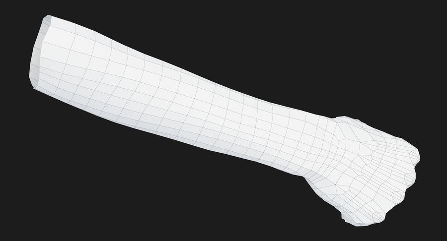 Female Arm A (Pose D Textured) Fist royalty-free 3d model - Preview no. 36
