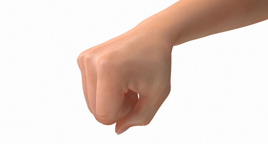Female Arm A (Pose D Textured) Fist royalty-free 3d model - Preview no. 24