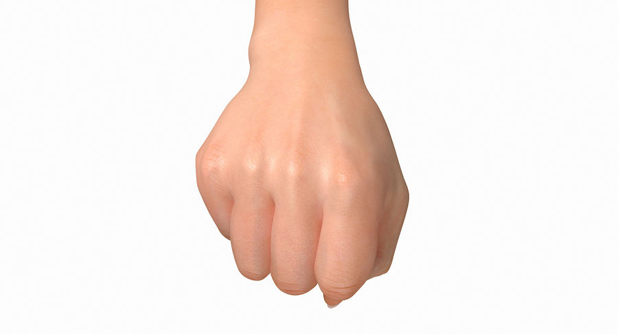 Female Arm A (Pose D Textured) Fist royalty-free 3d model - Preview no. 25