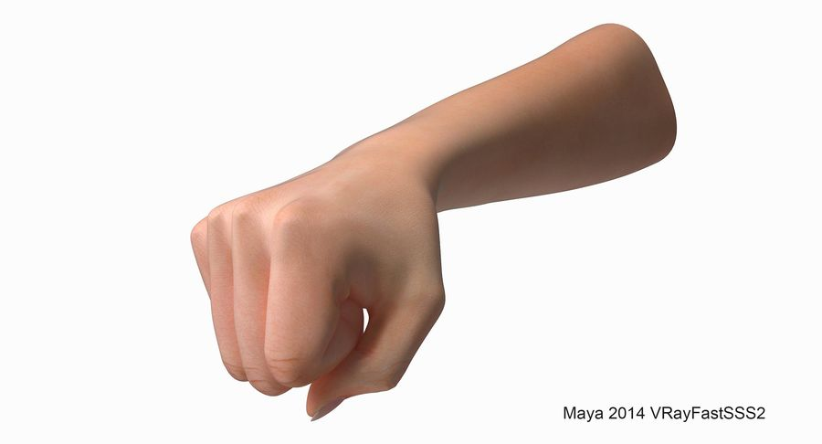 Female Arm A (Pose D Textured) Fist royalty-free 3d model - Preview no. 6