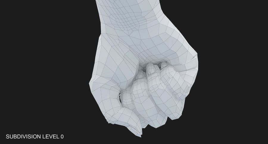 Female Arm A (Pose D Textured) Fist royalty-free 3d model - Preview no. 46
