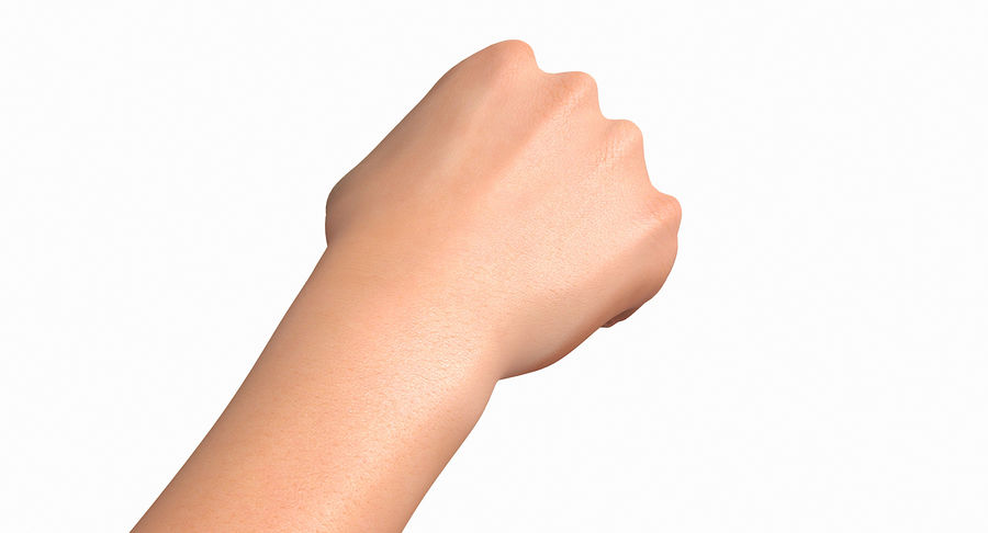 Female Arm A (Pose D Textured) Fist royalty-free 3d model - Preview no. 18