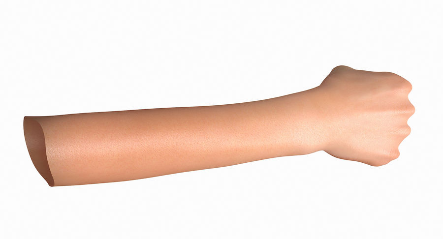 Female Arm A (Pose D Textured) Fist royalty-free 3d model - Preview no. 27