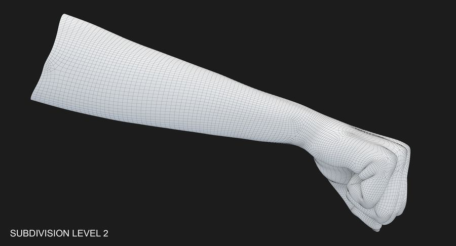 Female Arm A (Pose D Textured) Fist royalty-free 3d model - Preview no. 57