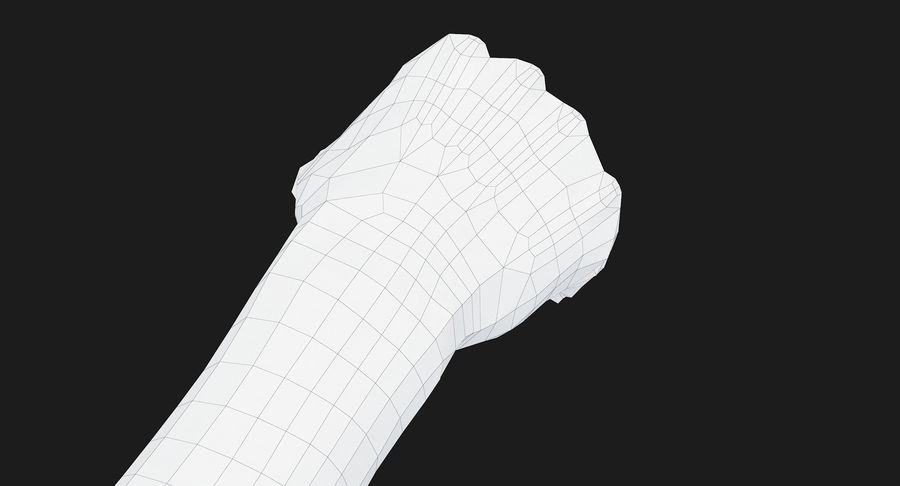 Female Arm A (Pose D Textured) Fist royalty-free 3d model - Preview no. 44