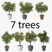 Пакет лимонных деревьев 3d model