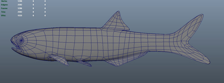 Bay Anchovy royalty-free 3d model - Preview no. 5