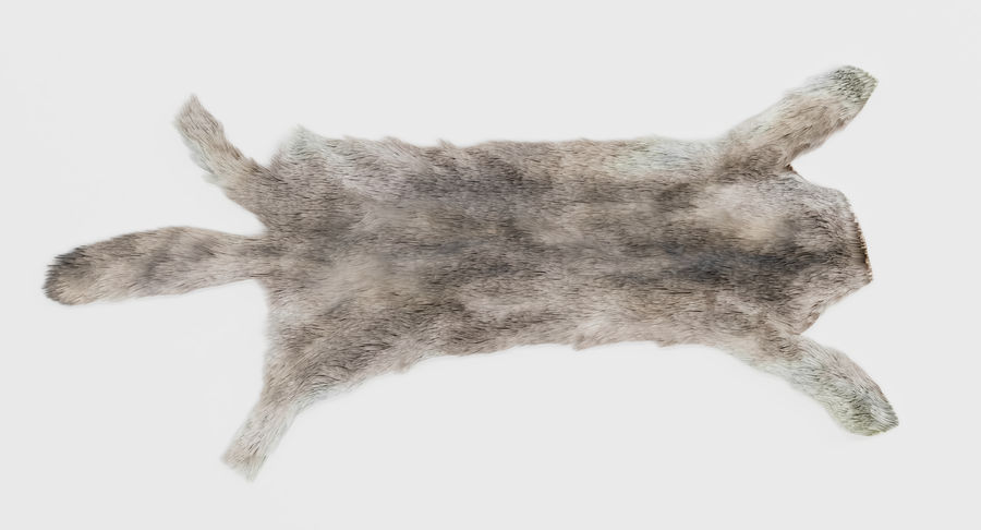 Animal Skins royalty-free 3d model - Preview no. 24