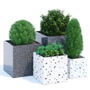 Terrazzo cube 3d model