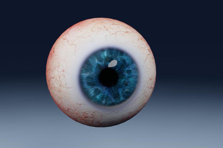 인간의 눈 royalty-free 3d model - Preview no. 1